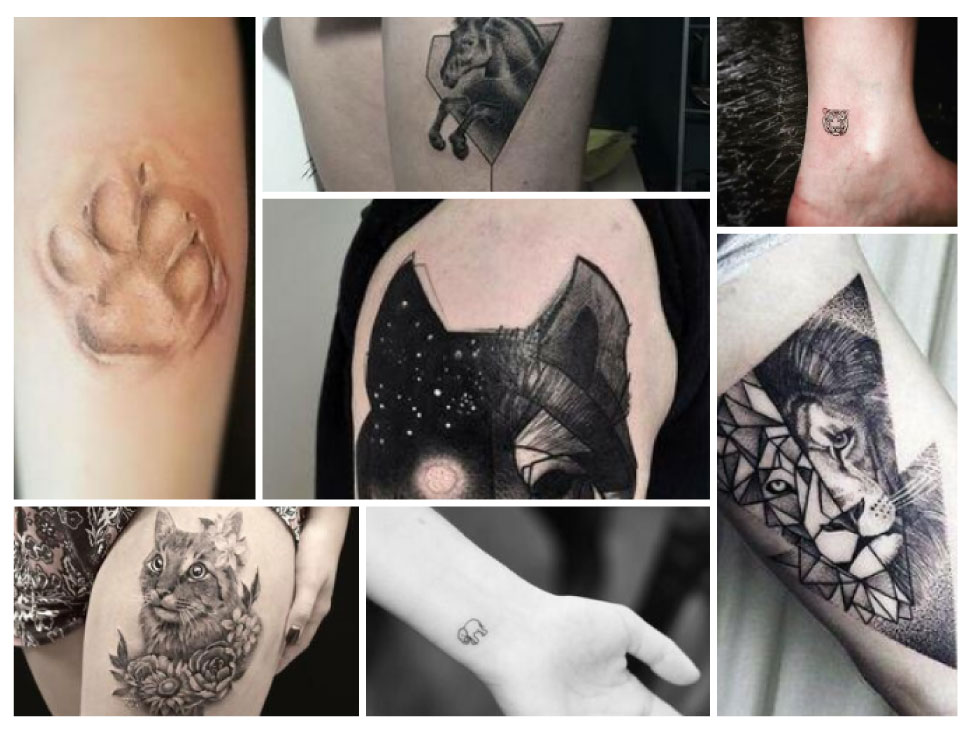 7 Animal Tattoos You Cannot Resist!